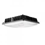 60W LED Surface Mount Ceiling Light, 8000 lm, 5000K, Black