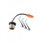 Downlight Accessory for Designer Surface Mount Fixtures