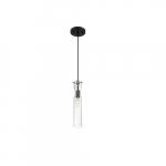 60W Spyglass Series Mini Pendant Light w/ Clear Glass, Black