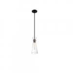 60W Bahari Series Mini Pendant Light w/ Clear Glass, Black