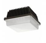 39W Low Profile LED Canopy Fixture, 5000K