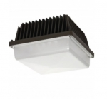 39W Low Profile LED Canopy Fixture, 5000K