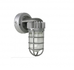 13W LED Wall Mounted Jelly Jar Light, 5000K, Silver Finish