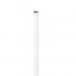 8W 2-ft LED T8 Tube, External Driver, Dual-Ended, G13, 1200 lm, 120V-277V, 5000K