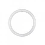 16W LED T9 Circline Tube, 32W Fl Retrofit, Ballast Bypass, G10Q, 1760 lm, 6500K