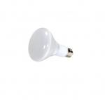 10W LED BR30 Bulb, 65W Inc. Retrofit, E26, 700 lm, 120V, 2700K, Frosted