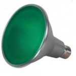 15W LED PAR38 Bulb, Green
