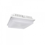 40W LED Canopy Light, 150W MH, 4700 lm, 4000K, White