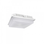 55W LED Canopy Light, 175W MH, 6800 lm, 5000K, White