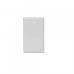 1-Gang Blank Face Wall Plate, Plastic, Standard, White