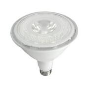 LED PAR Bulb
