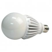 LED PS30 Bulb