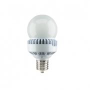 LED A25 Bulb