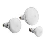 Forest Lighting LED BR Bulb