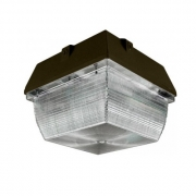 Dabmar Lighting LED Canopy Light