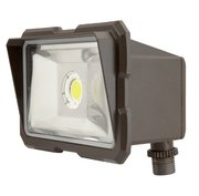 TCP Lighting Flood Light