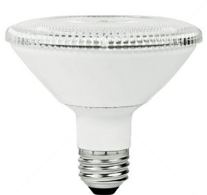 10W Dimmable LED PAR30 Bulb, 3000K