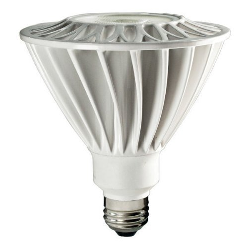 PAR38 19W Wet Location LED Bulb, Flood, 40 Degree, 2700K