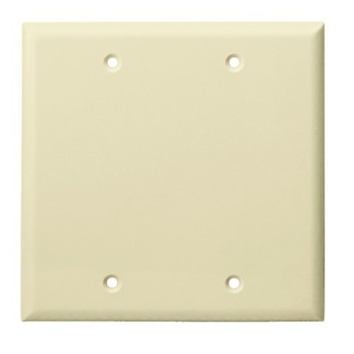 Almond Colored Thermoplastic Two-Gang Blank Wall Plate