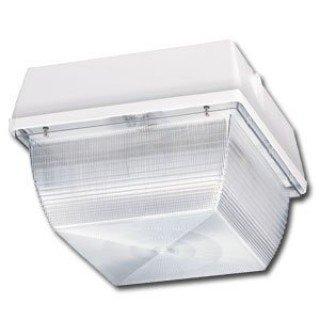 60 Watt White LED Canopy Ceiling Mount Light, 5000K