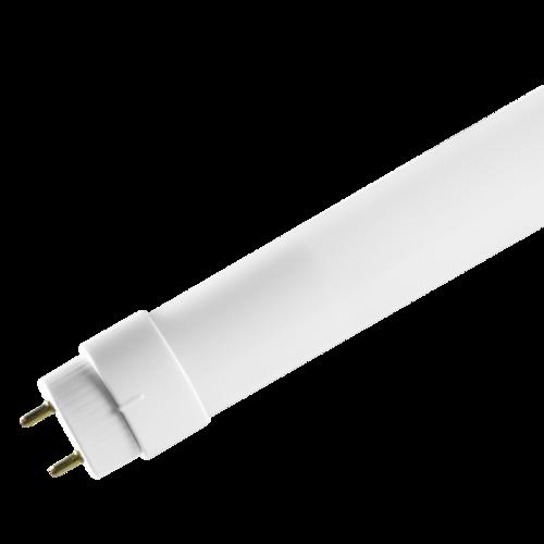 12W 3500K T8 Tube Direct Wiring, 2 Ft