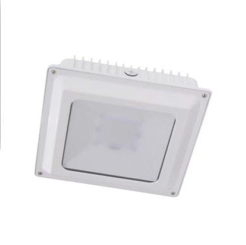 5000K 45W 5000lm LED Canopy Fixture