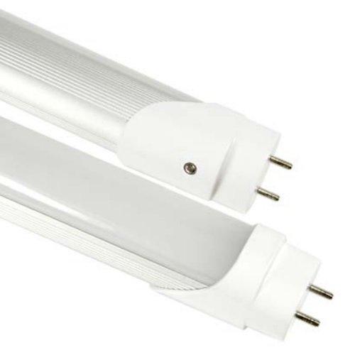 31W 4100K, 6 Foot, LED T8 Bulb