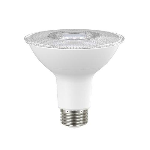 10W LED PAR30L Bulb - 900 Series, 3000K, 120 V