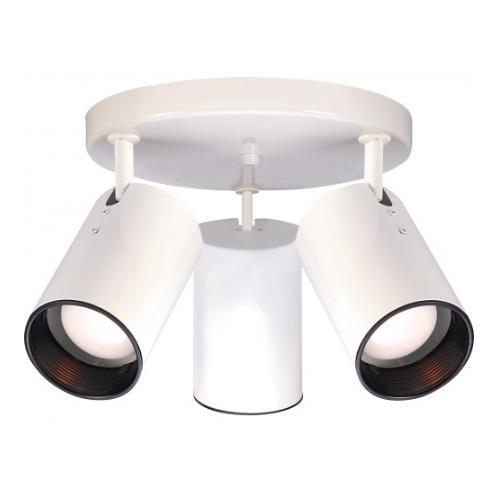 3-Light Semi-Flush Mount Straight Cylinder R20 Light Fixture