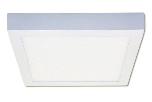 Square 10W LED Designer Canopy Light 3000K
