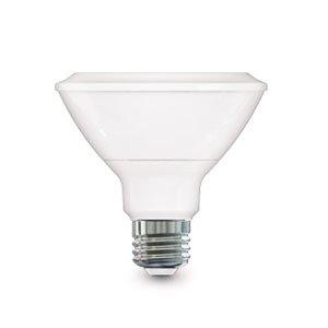 13W Dimmable PAR30 LED Bulb, 2700K, 120V