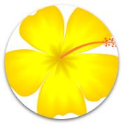 yellow flower petal for energy living building challenge