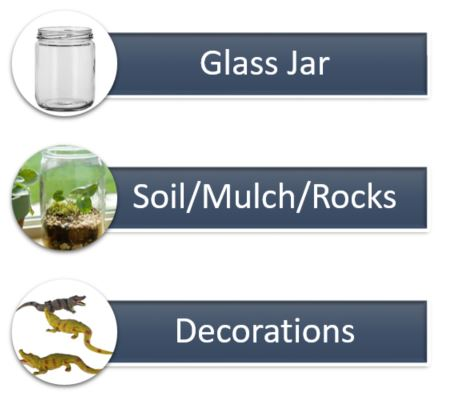 spooky terrarium supplies