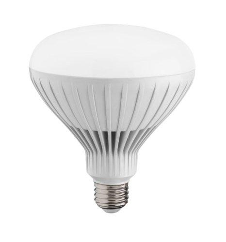 E26 bulb base