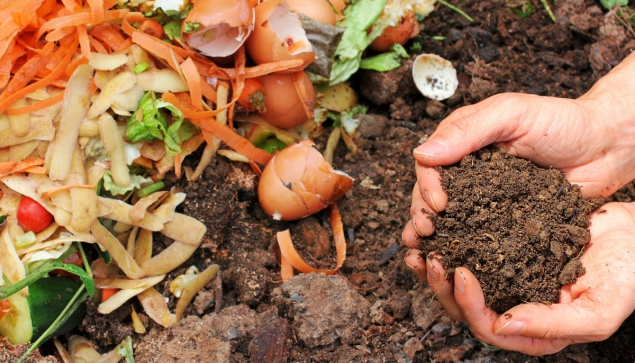 biodegradable materials for gardening