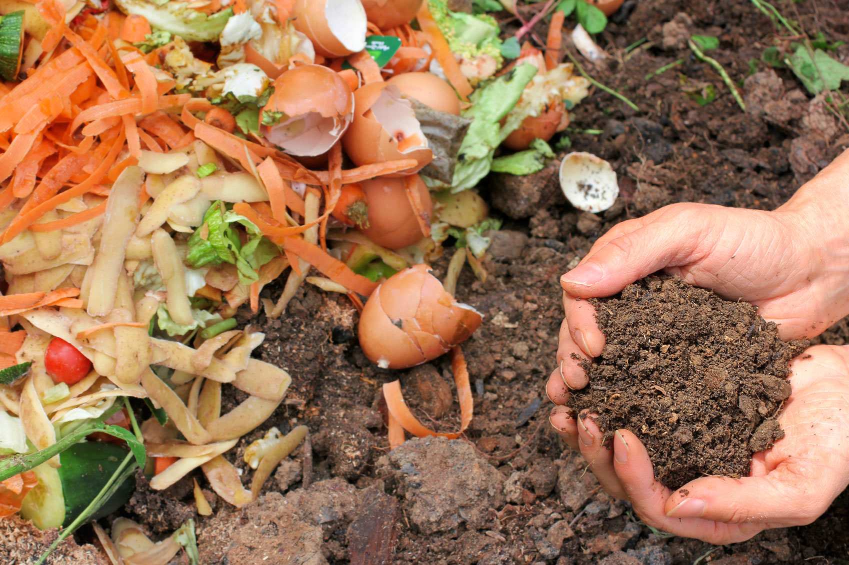 biodegradable items for composting