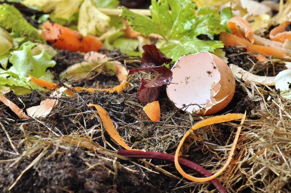 nonbiodegradable items you cannot compost