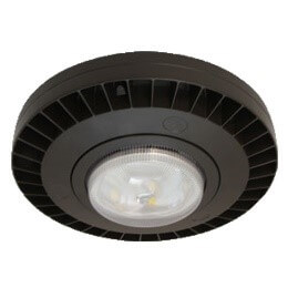 LED discmax canopy light