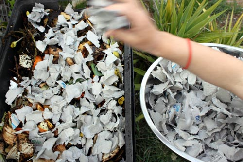 recycled egg cartons for compost soil