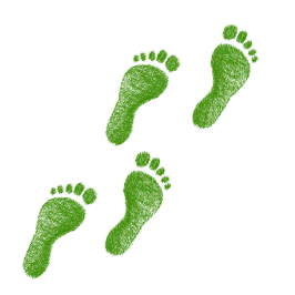 image of green footprints