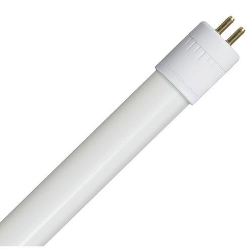 A fluorescent bulb