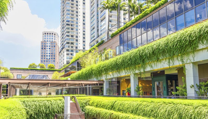 sustainable building design with LEED certification