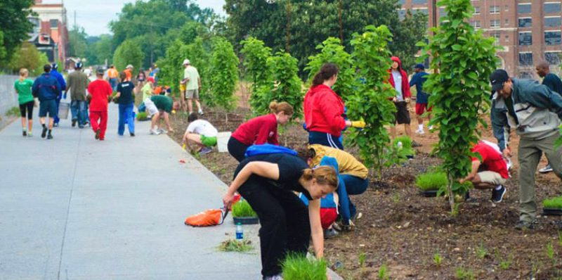 Planting Trees on the Beltline