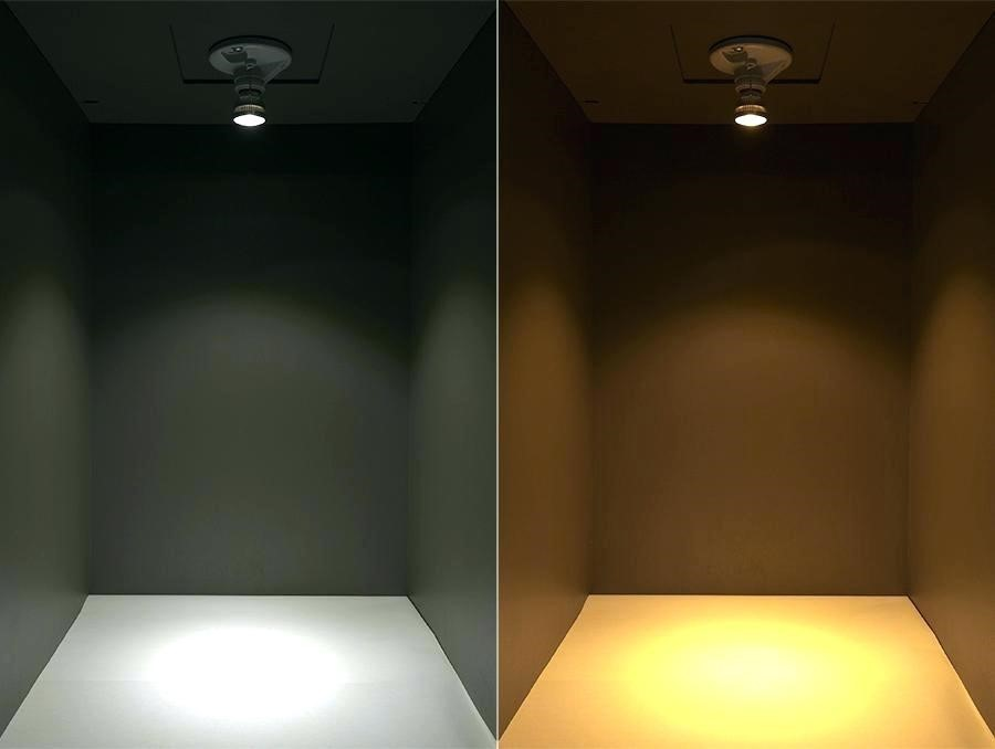 LED Bulb Color Visual Display